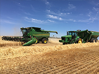 Harvest 2016 at Springbank