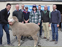 2015 On Property 'Springbank' Saddleworth - Rices Creeks James Vandeleur,
