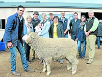 2014 – 'Springbank' Saddleworth On-Property Sale- James Vandeleur,
