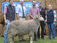 2016 On Property Tintinara - Ryan and Mark Vandeleur,