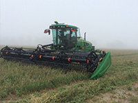 Harvesting crops in the fog